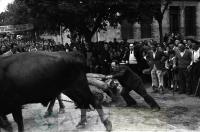 DEP 0037 LIB Arrastre de piedra en la plaza (1948).jpg